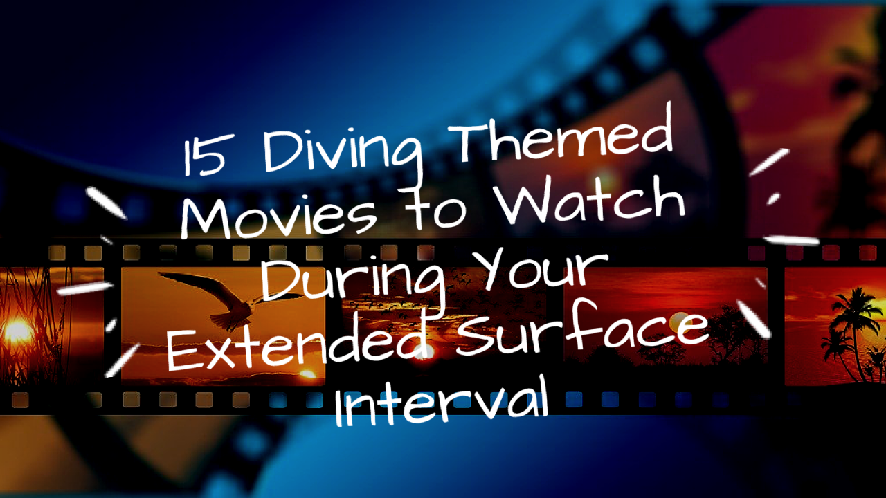 Blog - 15 diving themed movies to watch during your extended surface interval